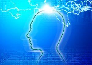 左右で脳への信号が変わる