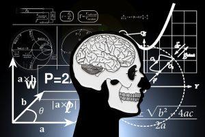 脳の発達と耳の関係性